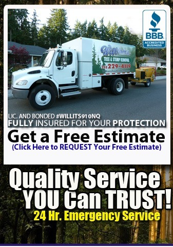 Get a free estimate on your tree removal project.